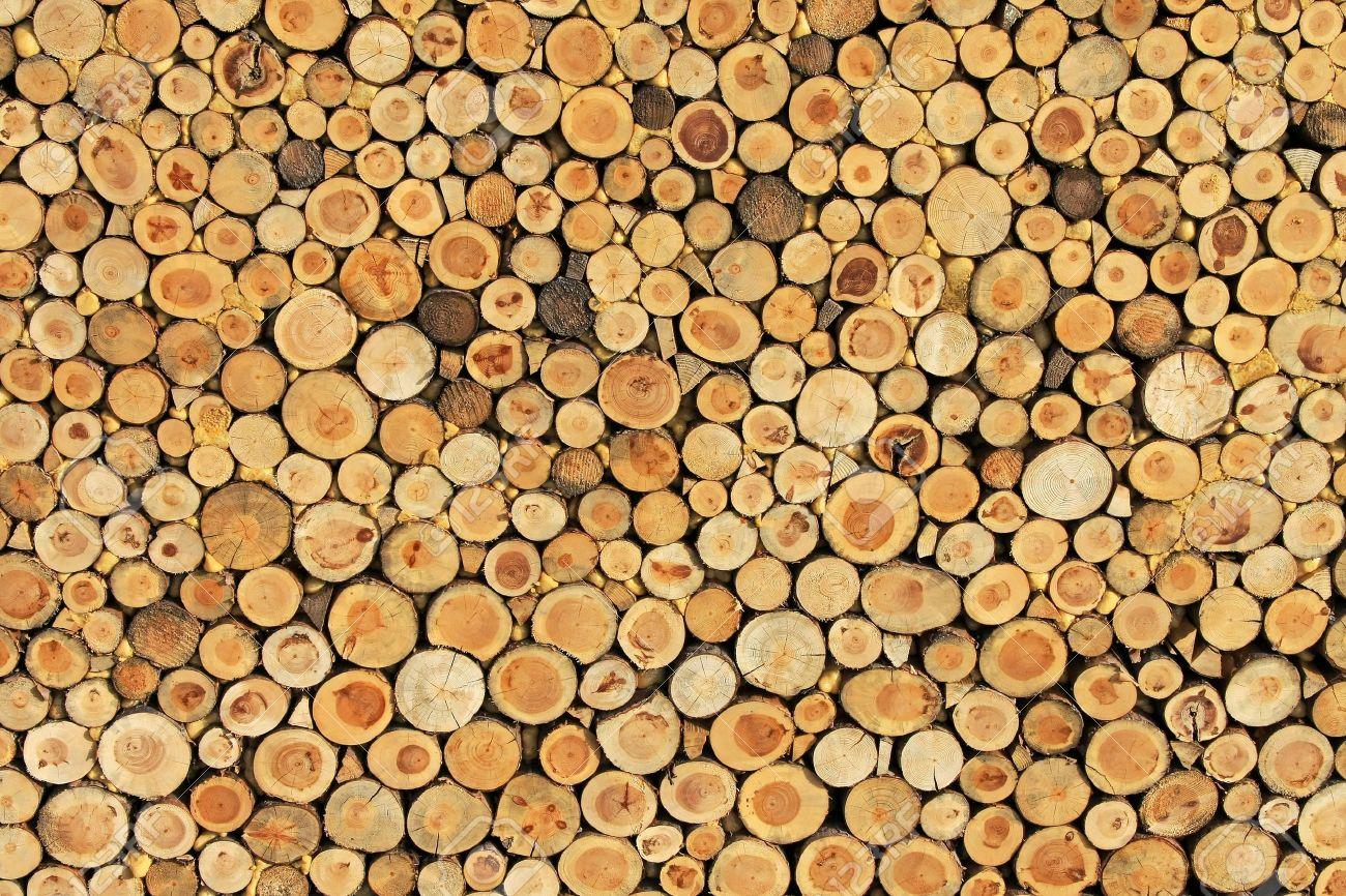 wooden world ltd  timber merchants