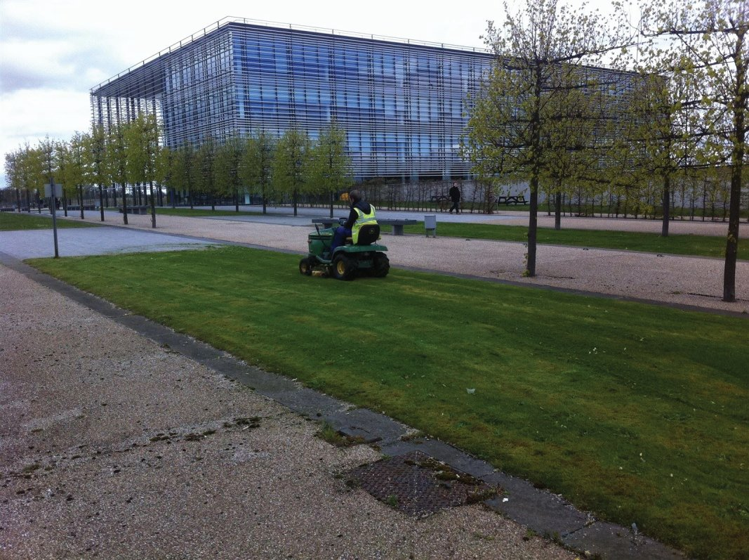 Office grounds and gardens maintenance in Edinburgh, Midlothian, East Lothian, Fife and the Scottish Borders regions