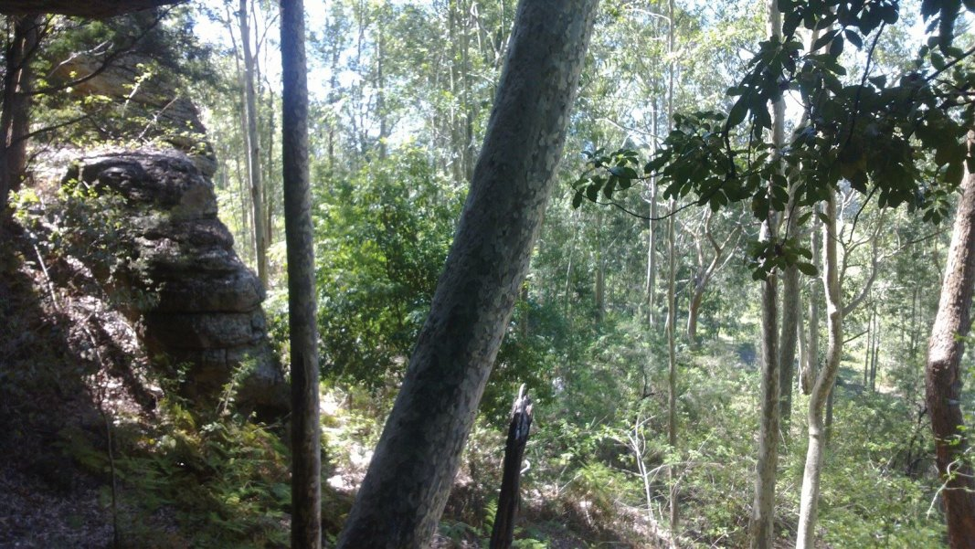 Nowra - 10 minutes from the CBD and a thousand miles from traffic