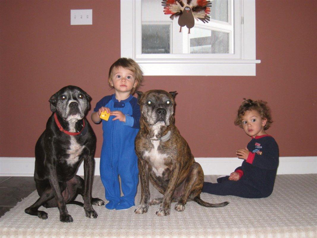 Timmy, Georgie and Boys