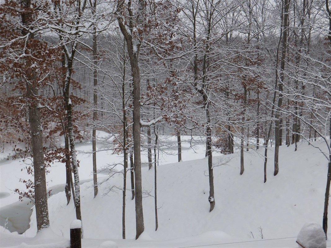 2012 Blizzard