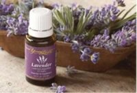 Young Living Lavender Oil Healing with Essential Oils Raindrop Therapy Massage