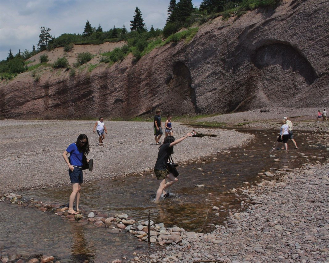 Walk on the Ocean Floor of the Bay of Fundy