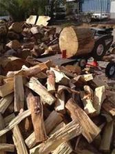 Can you burn Eucalyptus Wood in your Fireplace?