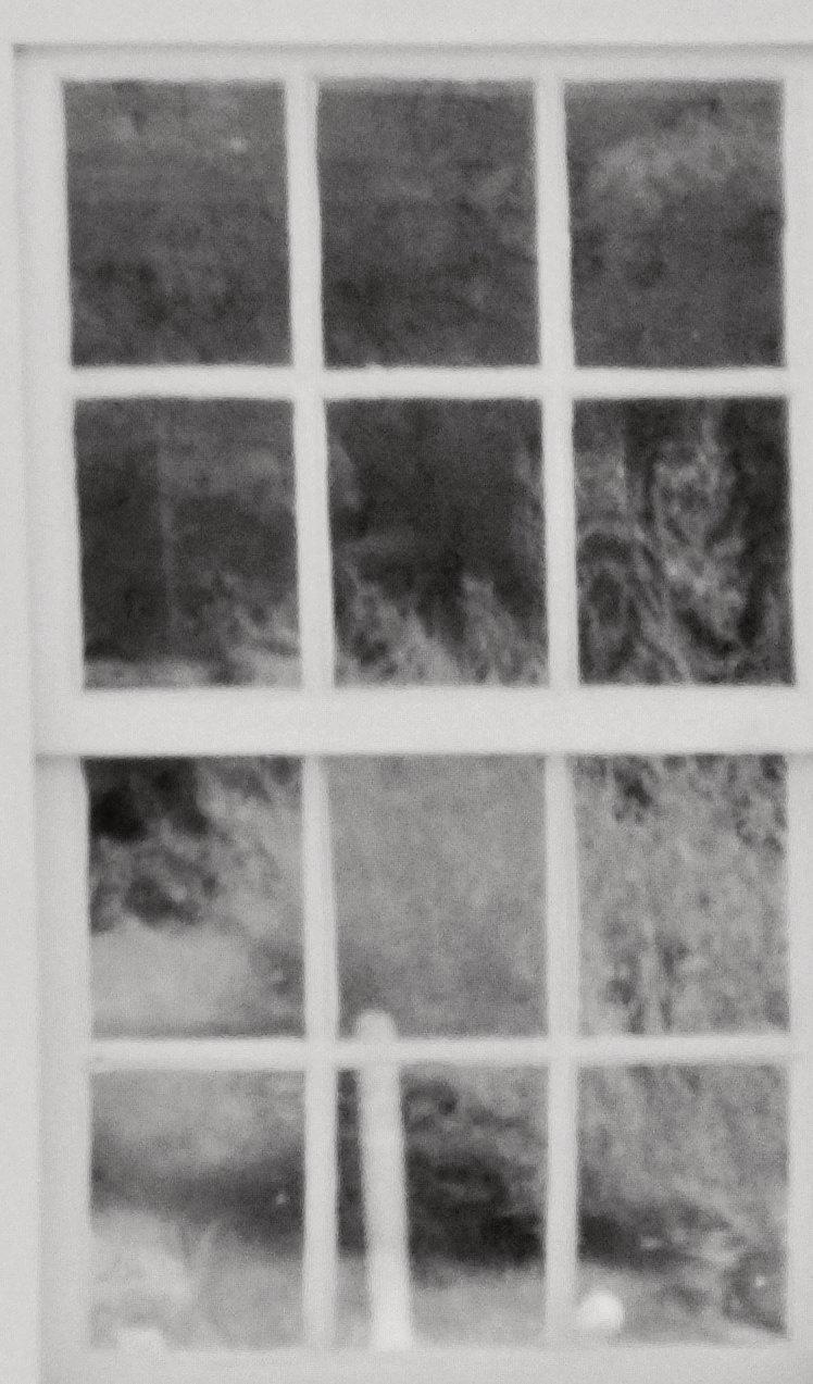 Enlargement: Right Kitchen Window (Full Spectrum)