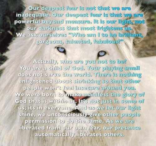 White Lion, bible, freak of nature fitness, Prayer, deepest fear, Who am i to be, purpose, motivation, quotes, fitness