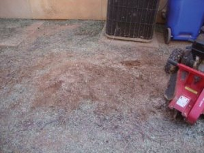 Tucson, Arizona has Tree Stump Removal and stump grinding.