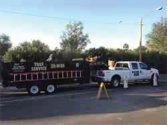 Tree Removal Service is lead by the top Tree Service in Tucson, Arizona.