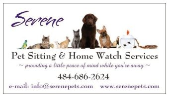 Chester County, PA pet sitting