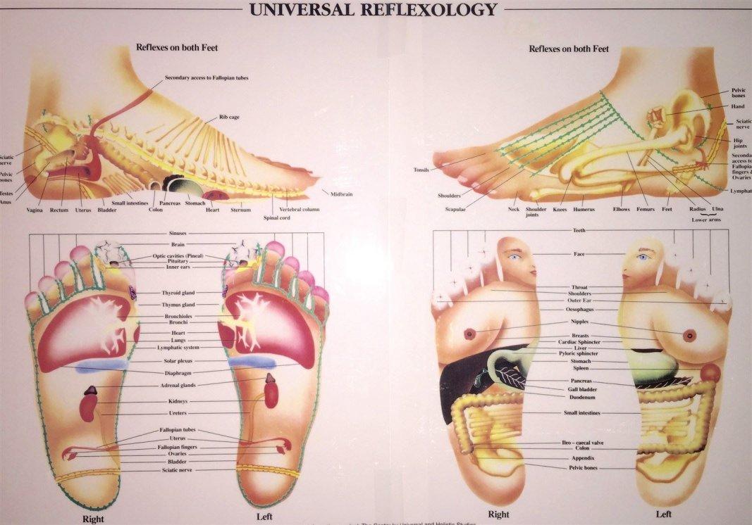 Universal Method of Reflexology, Reflexology by Katie, Stonington CT