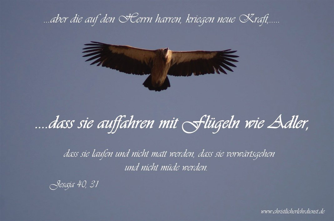fliegen wie Adler, laufen ohne Ermüdung, möglich durch Gottes Gnade