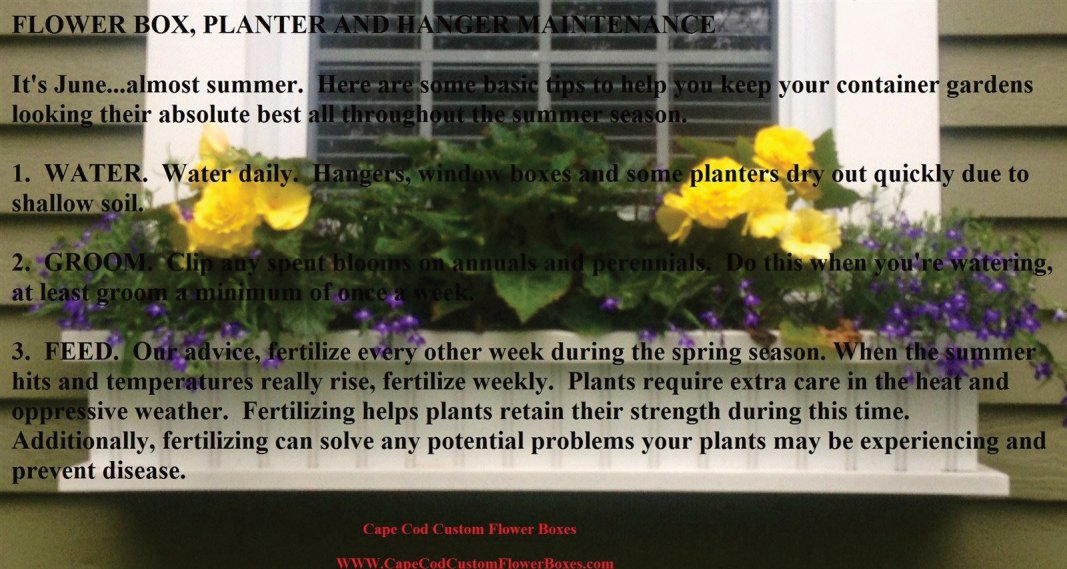 Flower Box Garden Maintenance