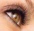 Beautiful Eyelash