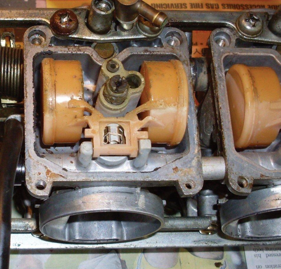 SDC11197