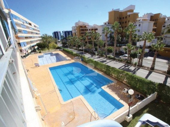 Holiday Let in Torrevieja. http://drivingschoolwhitleybay.co.uk/?page_id=753