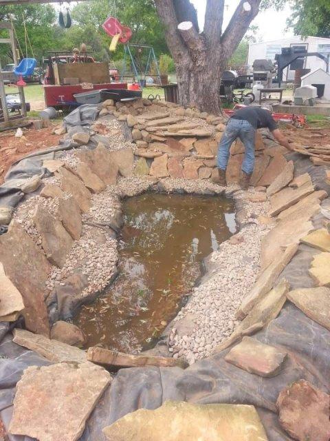 Koi pond design and build