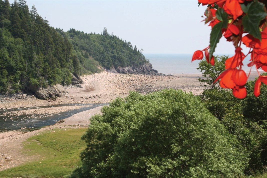 View of the Bay of Fundy from the Fundy Trail Interpretive Center