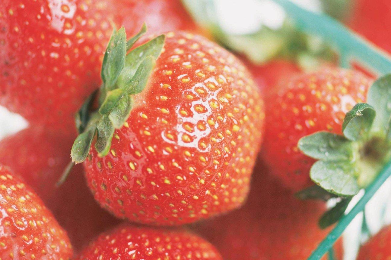 Sweet Strawberry Chocolate