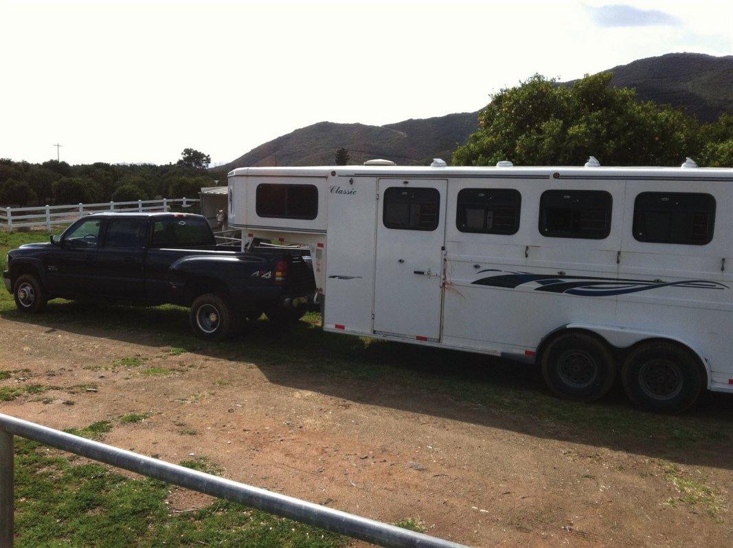 Weiterbildung in der Osteopathie für Pferde in den USA