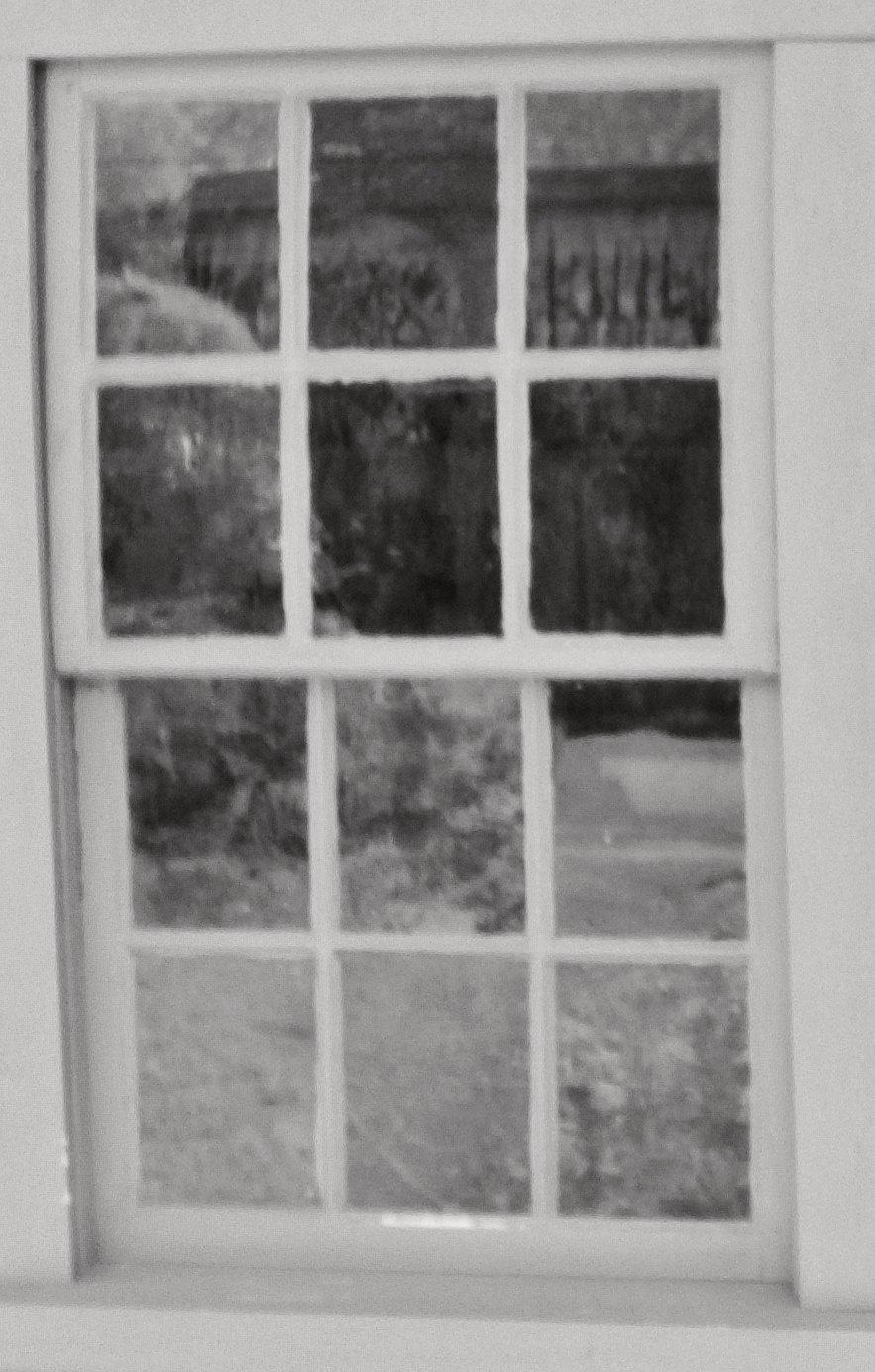 Enlargement: Left Kitchen Window (Full Spectrum)