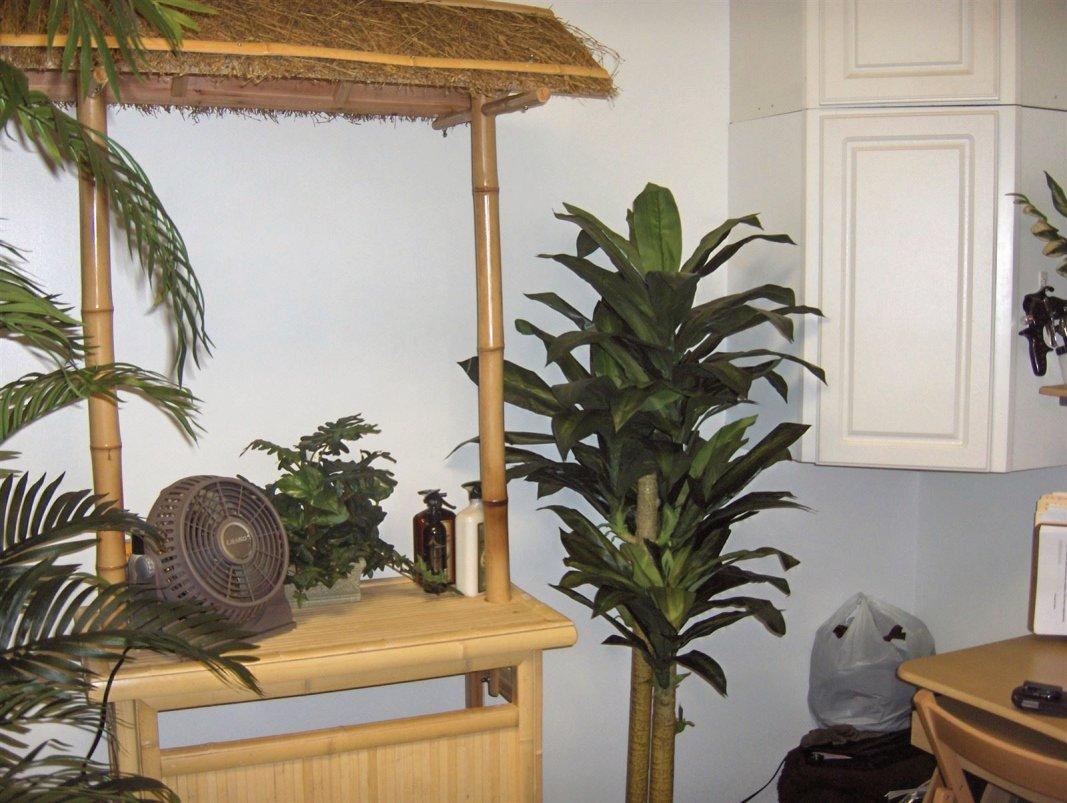 Spray Tan Room and Tiki bar