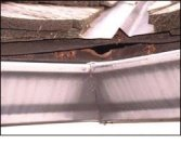 Look for holes such as this one around gutters and other potential entry points & if you spot any of these areas that rodents & other pests could enter, you should remedy these immediately to prevent a bigger problem that can cost you a lot of money and threaten the safety of your home, belongings & family.