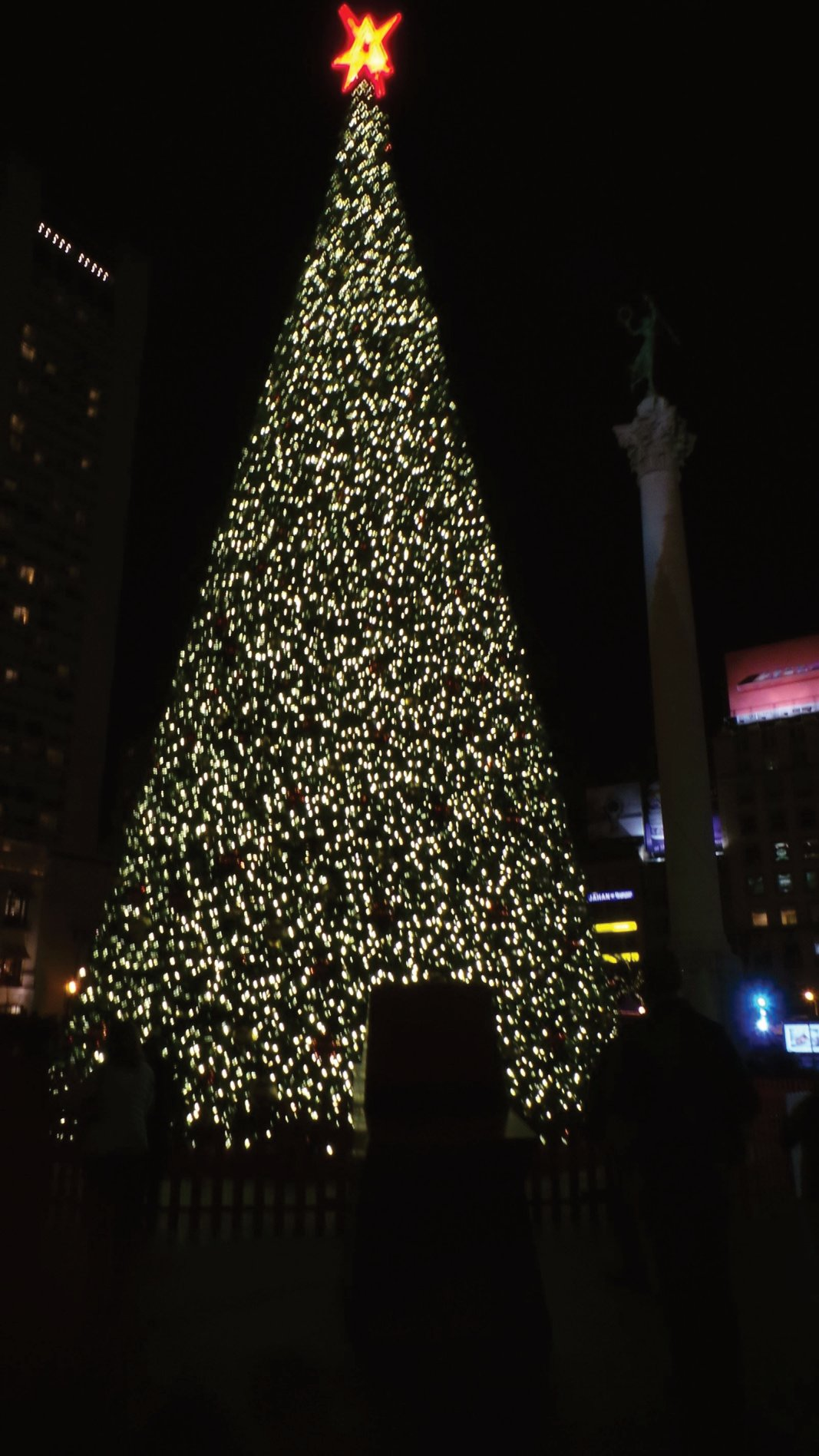 Christmas tree in Union Square, San Francisco.