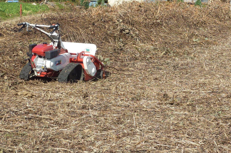 広域の草刈、除草作業を検討するときは、茨城の当便利屋タスカルにご一報を