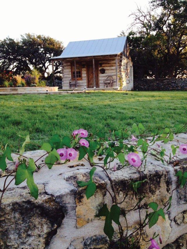 Amelia's Cabin, new native grass lawn