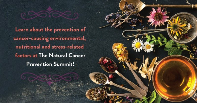 THE NATURAL CANCER PREVENTION SUMMIT