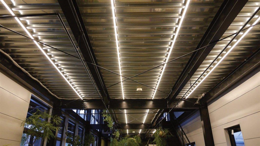 1階 売り場 LEDチューブライト