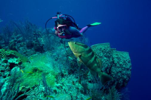 snorkeling en la parguera, bucear en la parguera, bucear en puerto rico