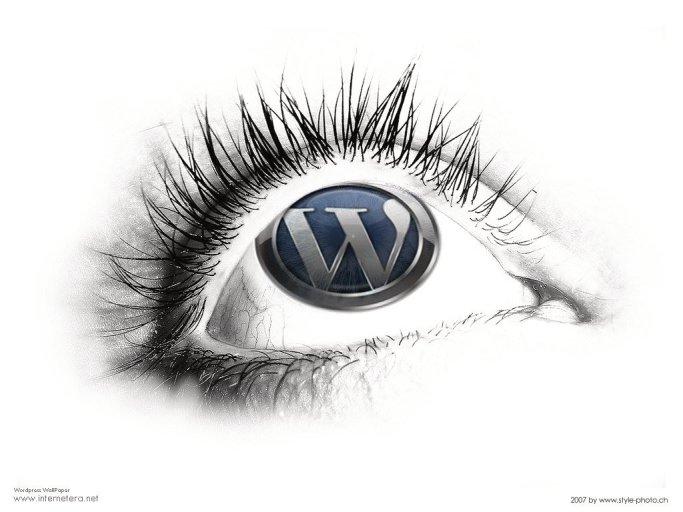 wordpress-logo...blog for pool service topics