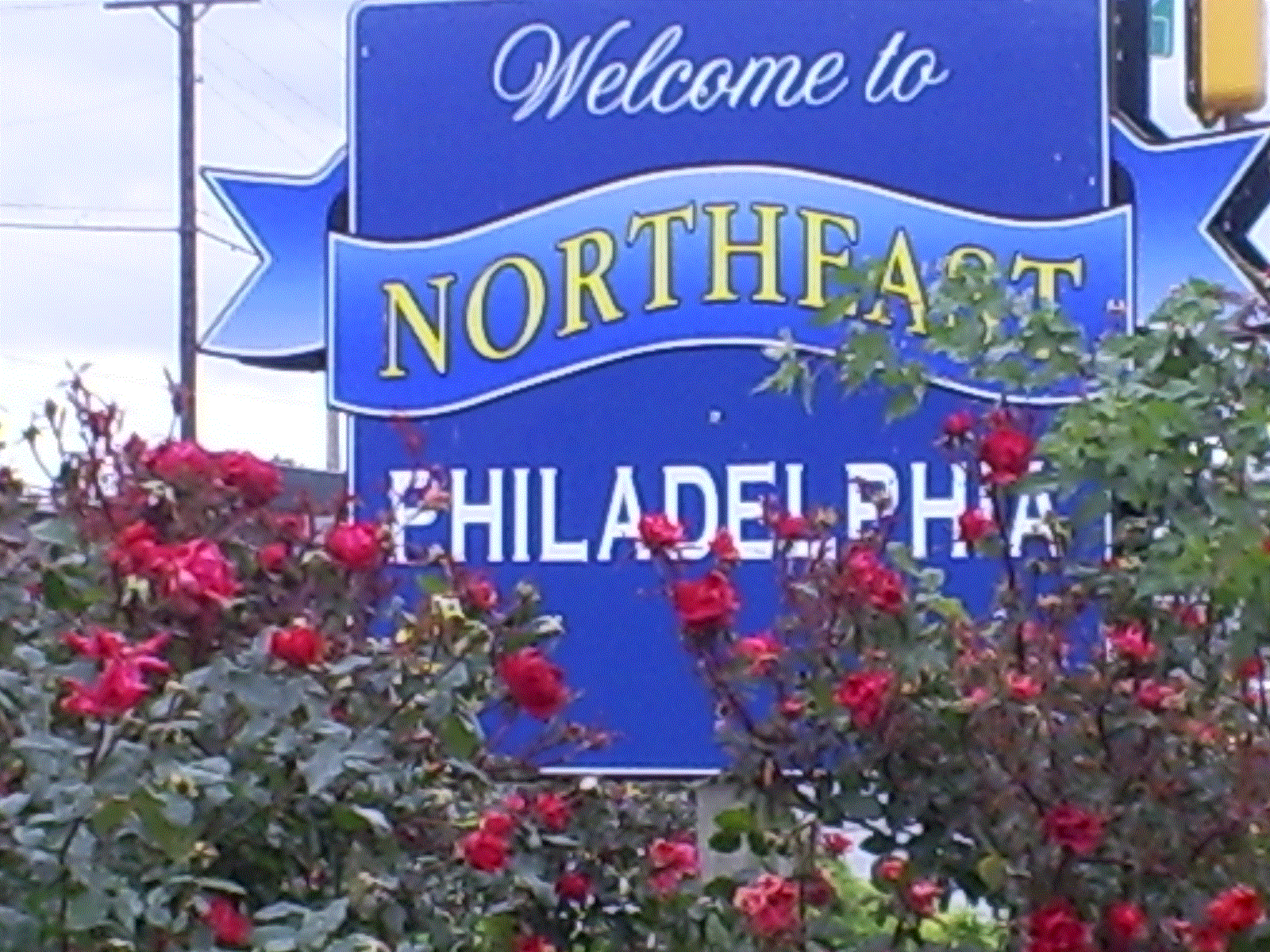 Northeast Philadelphia Window and Glass Repair