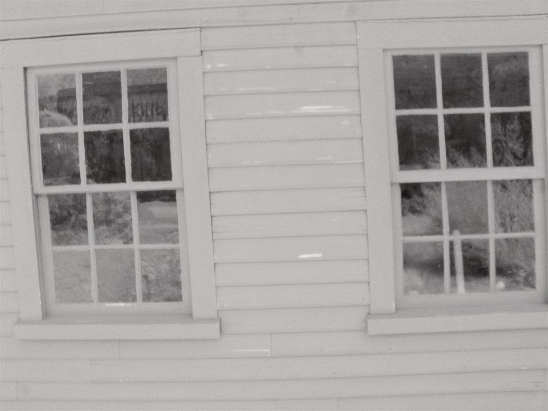 Rear Kitchen Windows (Full Spectrum)