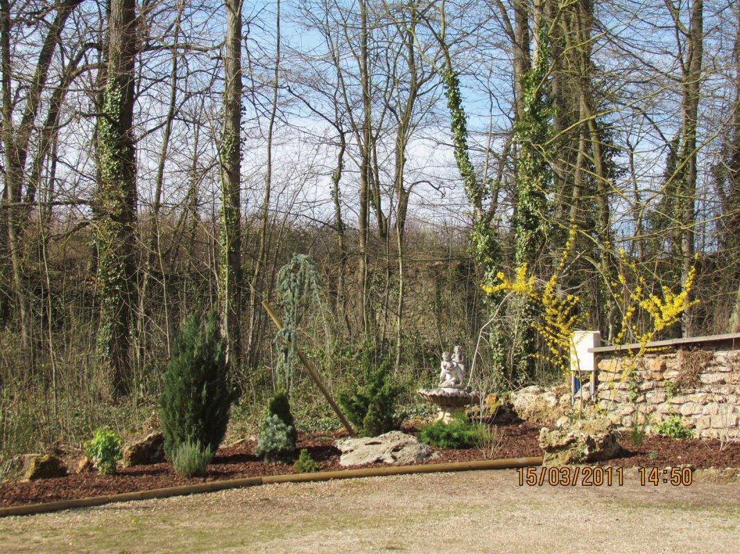Immovert - aménagement d'un jardin