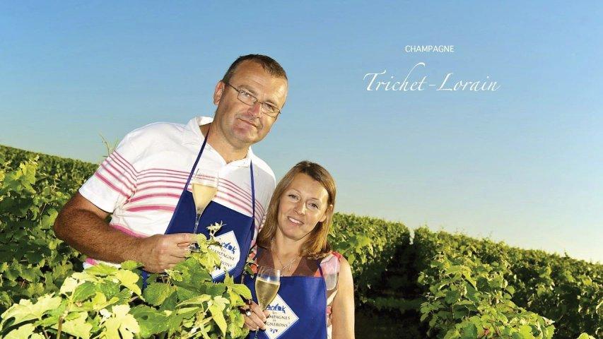 Vignerons/vignes/couples