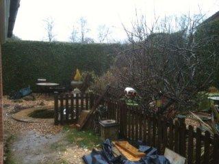 Garden Clearance, Romsey