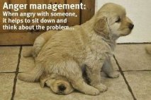 A new skill for Anger Management!