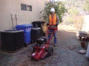 Stump Removal in Tucson, Arizona