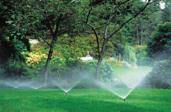 lawn fertalizer aplication