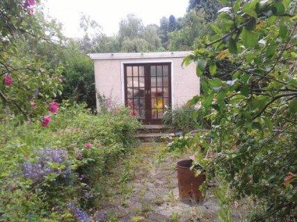 Hampshire garden Clearance
