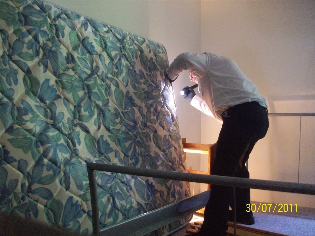 A careful inspection of the mattress and other furniture in the unit