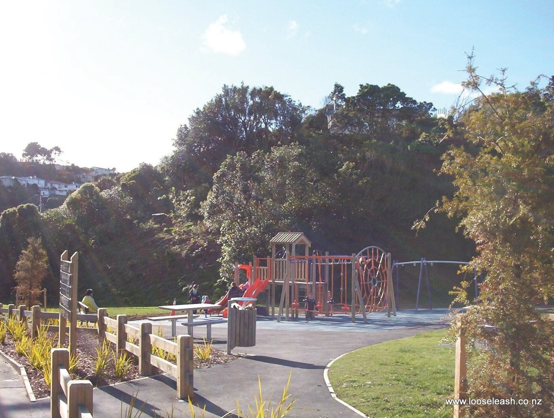 Lyndfield Lane Park and Childrens Playground, Bush Walk climbs the ridge in the backround, by Loose Leash Dog Walking Service Newlands Johnsonville Wellington