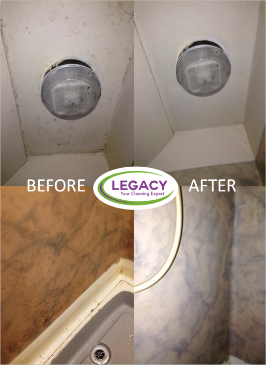 Mould Removal and Treatment
