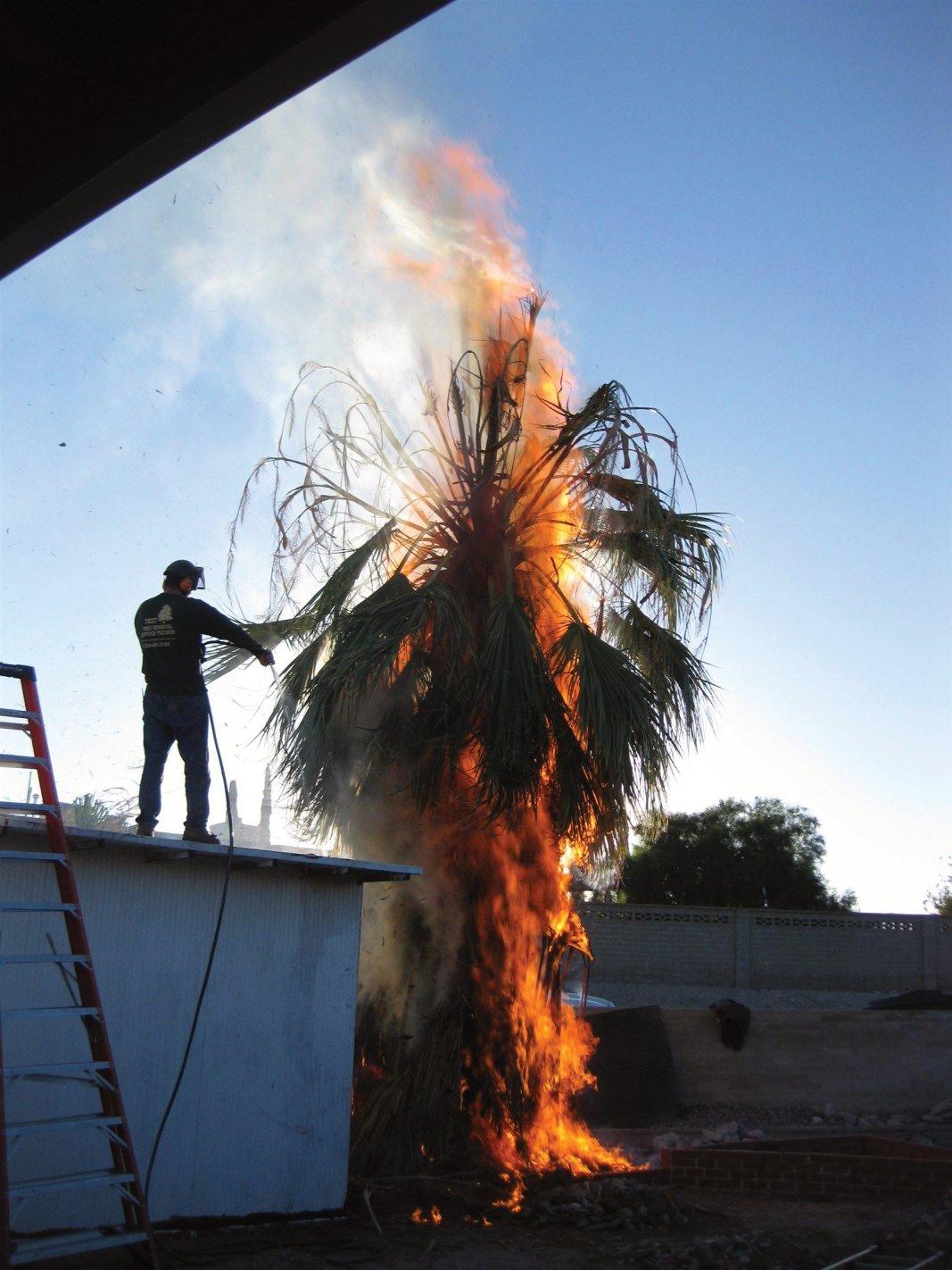 Fire in Tucson, AZ!